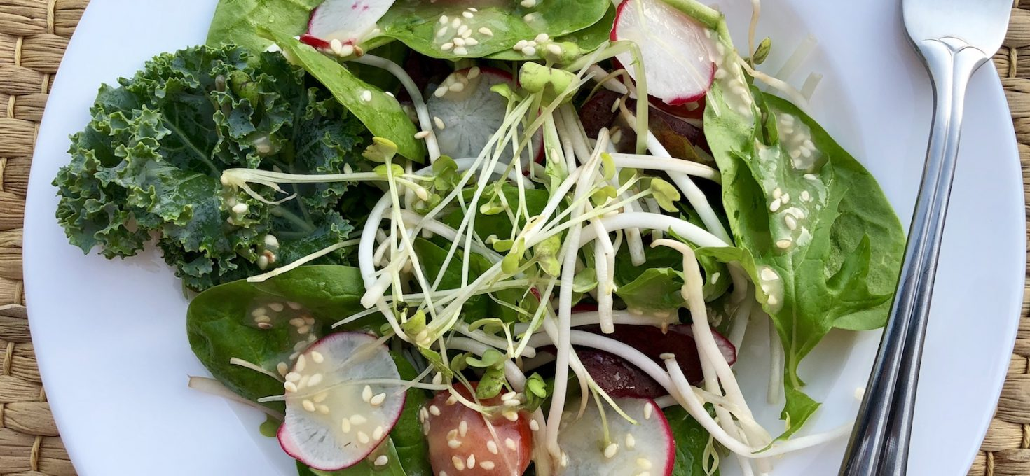 Salad Mix with Miso and Honey